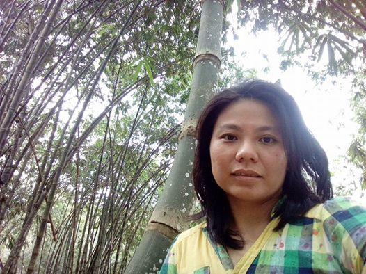 Ta Lin (Wei Jing)