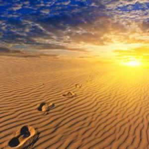 Bewusst SEIN – spirituelles Erwachen
